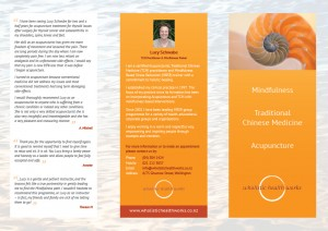 wholistic health works brochure side 1