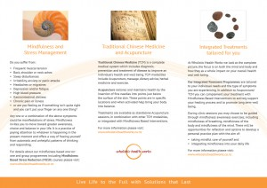 wholistic health works brochure side 2